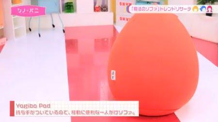 ヨギボーポッドオレンジ・シノバニ