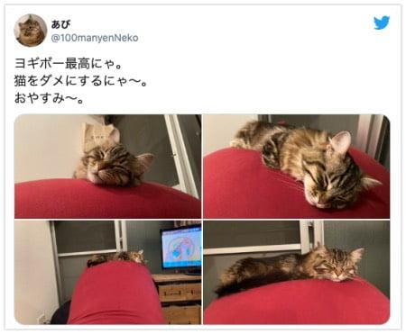 ヨギボーソファでダメになる猫