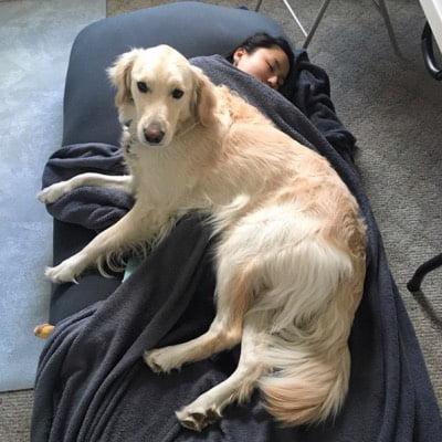 ヨギボーマックスで大型犬と一緒にくつろぐ