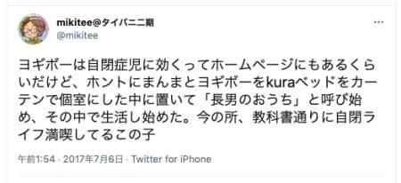 自閉症の子供を持つ親が実際にヨギボーを購入した感想(日本)